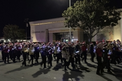 ParadeofLight2018 (14)